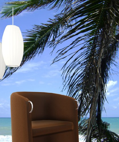Natal Beach Palm Tree Huge Wall Mural Decal Sticker
