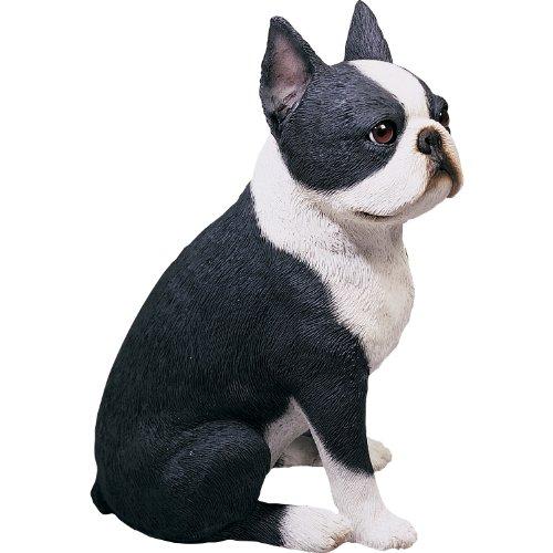 Cute Boston Terrier Sculpture, Sitting