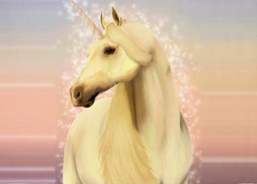 unicorn area rug