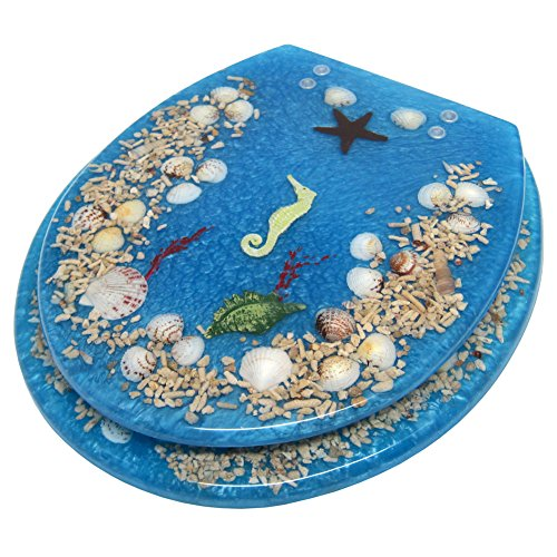 Cute SEASHELL AND SEAHORSE Acrylic Toilet Seat Light Blue