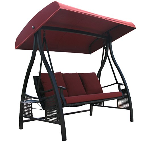 3 Person Swing with Canopy