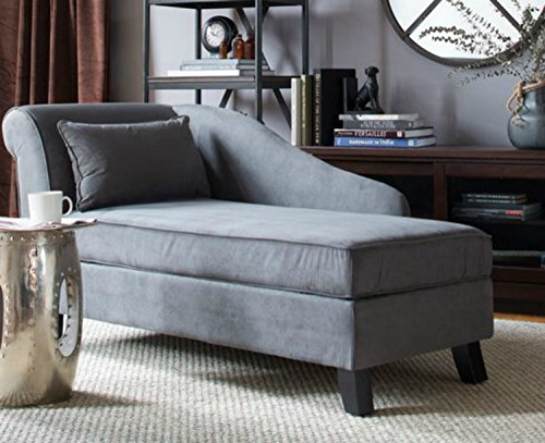 Nice Upholstered Storage Chaise Gray Color