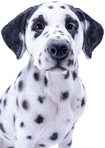 Beautiful Sitting Dalmatian Dog Statue