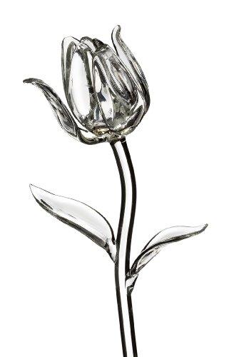 Beautiful Crystal Tulip