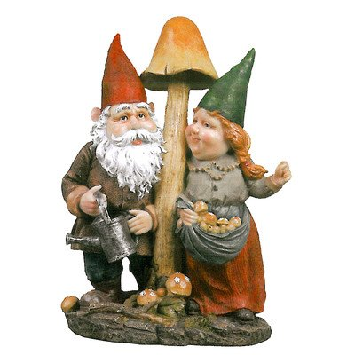 Cute Couple Gnome