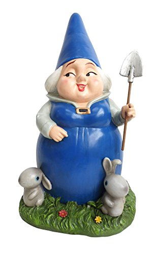 Lady Blueberry Gnome Woman
