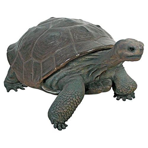 Beautiful Turtle Sculpture