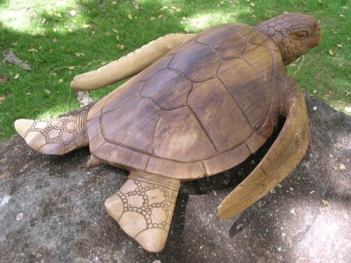 Cool Wooden Turtle