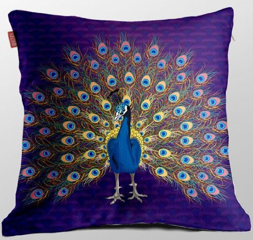 Cute Peacock Cushion