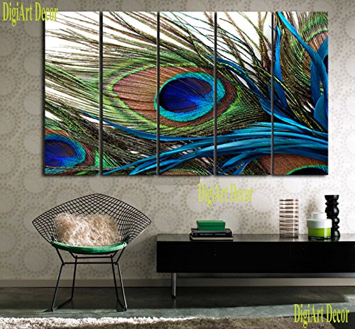 Stunning Peacock Feathers Wall Art